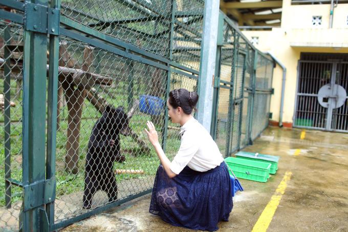 <p> Hoàng Anh đã được thấy những chú gấu con mất mẹ, mất chân vì bẫy hay những chú gấu đã suy kiệt vì bị thu mật bán ra thị trường.</p>