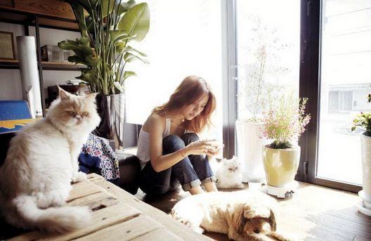 <p> 3 vật cưng của Lee Hyori: Mimi, Soon Shim và Go Sooni.</p>