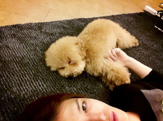 <p> Chú cún Chang Seok của Jae Joong.</p>