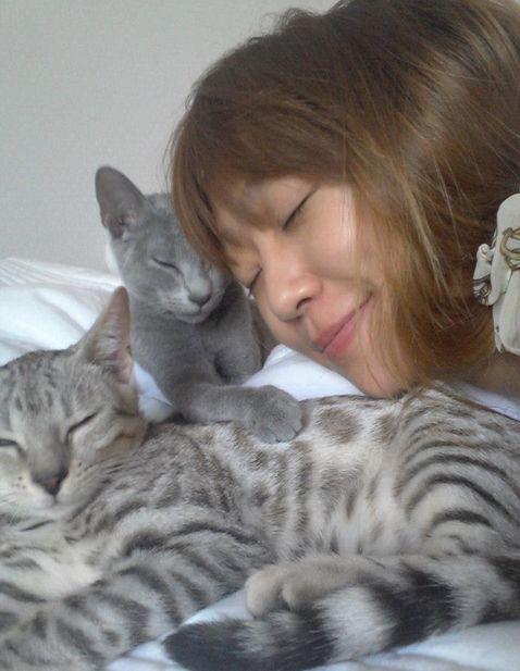 <p> Trưởng nhóm SISTAR Hyorin bên hai chú mèo Lego và Lino.</p>