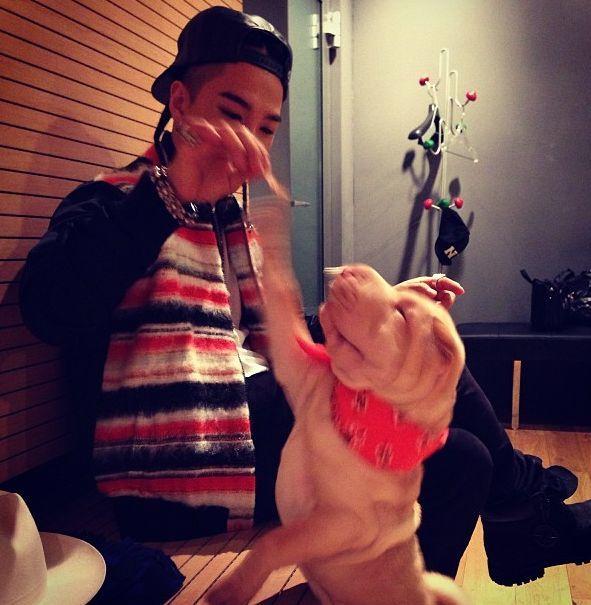 <p> Tae Yang đang đùa nghịch với cún Jolie của G-Dragon.</p>