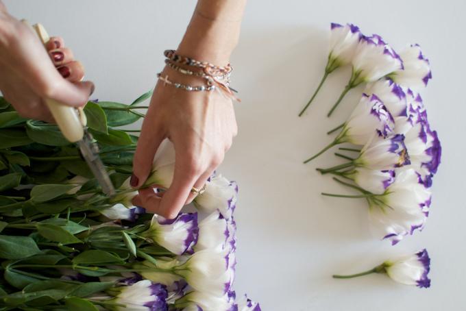 """<div style=""""text-align: center;""""> <strong>Bước 1:</strong><br /> <br /> Đầu tiên, các ấy cắt rời từng đầu bông hoa dài khoảng 7-8 cm (Bao gồm cả thân cành và bông hoa).</div>"""