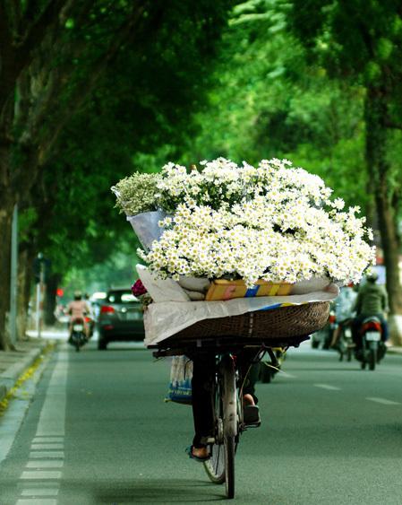 """<p class=""""Normal""""> Lang thang trên phố, bạn sẽ luôn bắt gặp những chiếc xe bán các loại hoa theo mùa. Đó là hoa đào báo hiệu xuân về mùa xuân, hoa loa kèn tháng tư, hoa sen đầu hạ, hoa cúc vàng khi thu sang hay hoa cúc họa mi cuối thu đầu đông.</p>"""