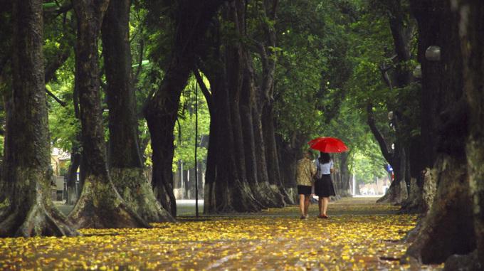 """<p class=""""Normal""""> Bạn hãy dạo bước cùng một ai đó trên phố để cảm nhận sự bình yên, lãng mạn…<span>Vẻ tĩnh lặng về đêm của phố Phan Đình Phùng.</span></p>"""