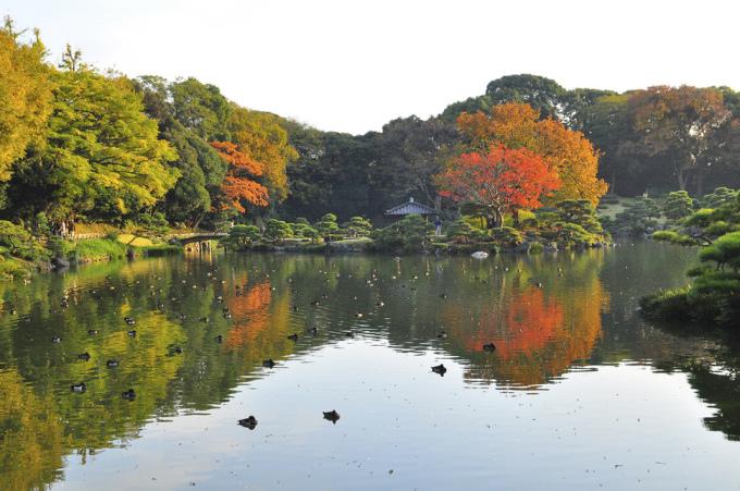 """<p class=""""Normal""""> Khu vườn Kiyosumi Teien ở Fukugawa (Tokyo) có diện tích khoảng 250 m2.</p>"""