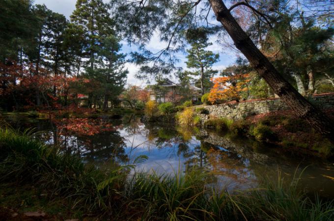 <p> Đền Tōji-in ở Kyoto là một nơi dừng chân tuyệt vời cho những tâm hồn cần sự thanh tĩnh.</p>