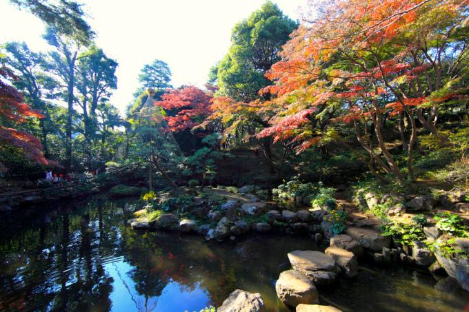 <p> Vườn Tonogayato Teien nằm ở trung tâm Kokubunji, Tokyo, nổi tiếng với đường hầm hoa tử đằng.</p>