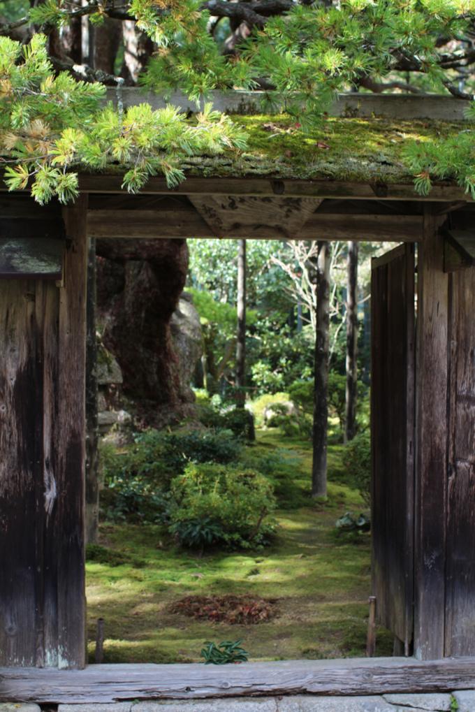 """<p class=""""Normal""""> Những tòa kiến trúc ở Hōsen-in (Kyoto) được xây dựng bằng loại gỗ quý, kết hợp hoàn hảo với những khu vườn xanh mướt trong khung cảnh cổ kính.</p>"""