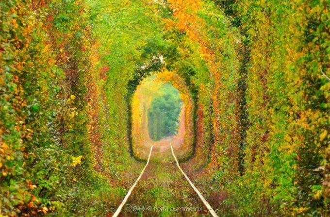 <p> Đường hầm tình yêu ở Caras-Severin, Rumani, khá giống với phiên bản khác ở Ukraina cũng rất nổi tiếng.</p>