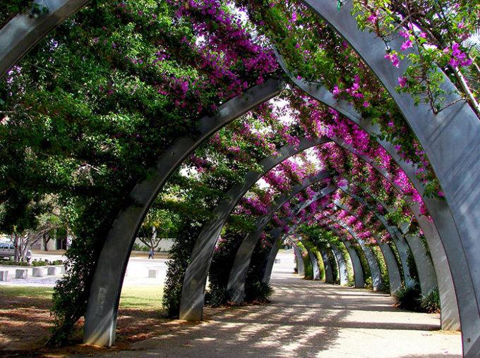 """<p class=""""Normal""""> Con đường hoa giấy ở thành phố Brisbane, Australia, được thiết kế đầy sáng tạo.</p>"""