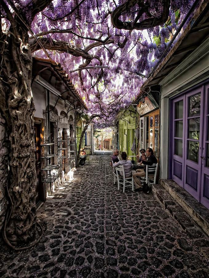 <p> Con đường nhỏ dưới những dải hoa tử đằng tím đẹp mê hồn ở thị trấn Molyvos (Lesvos, Hy Lạp) là chốn hẹn hò cà phê, tận hưởng cuộc sống tuyệt vời.</p>