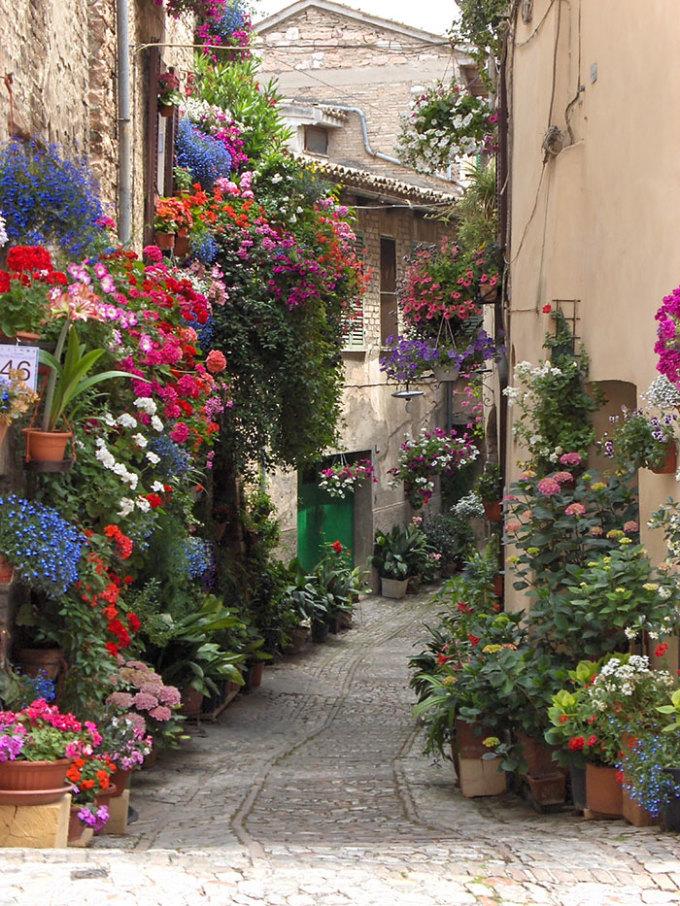 <p> Thị trấn cổ Spello ở Ý hút du khách bởi phong cảnh yên bình, những chậu hoa đủ màu tô điểm cho phố phường.</p>