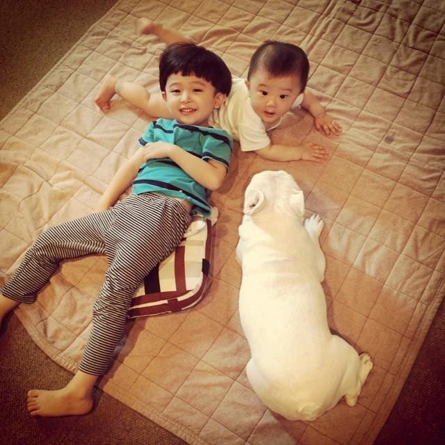 Hai nhóc tỳ Nhật Bản và chú chó Bull dễ thương 'chết người'