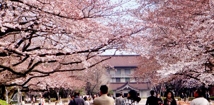 <p> <strong>Công viên Ueno, Tokyo</strong><br /><br /> Đây là một trong những công viên lâu đời nhất tại Nhật Bản với bóng anh đào rợp mát vào mùa xuân, hút hồn triệu du khách.</p>