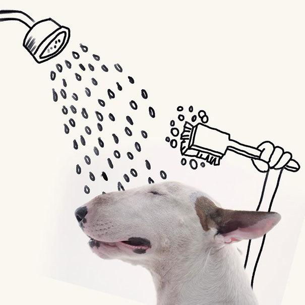 <p> Hay tự mình tắm vòi hoa sen thỏa thích...</p>