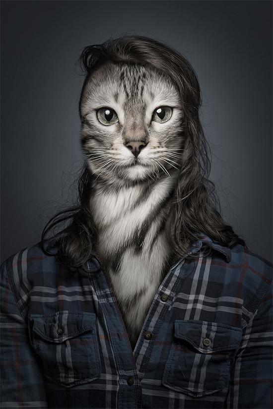 """<p> Những hình ảnh này được sáng tạo bởi nhiếp ảnh gia nổi tiếng người ĐứcSebastian Magnani. Đây là bộ ảnh """"Undercats"""" nằm trong loạt dự án về các loài thú cưng của anh.</p>"""