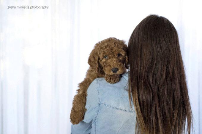 Chú chó không xinh vẫn được cưng như em bé