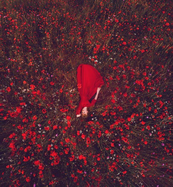 <p> Cánh đồng hoa Poppy, Crimea.</p>