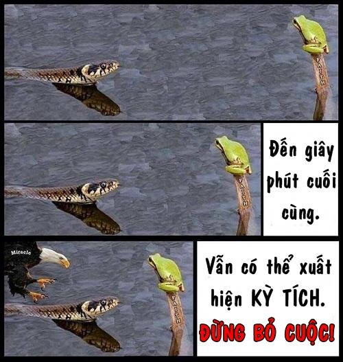 cuoi-te-ghe-15-9-khuon-mat-goc-nao-cung-chet-7