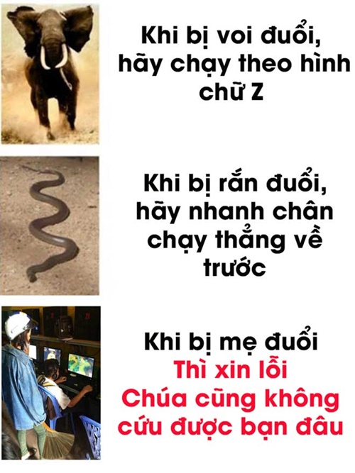 cuoi-te-ghe-17-9-bieu-tuong-chinh-thuc-cua-friendzone-2