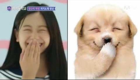 9-idol-nu-duoc-debut-thong-qua-cuoc-thi-chi-nhin-mat-khong-xet-tai-nang-2-7
