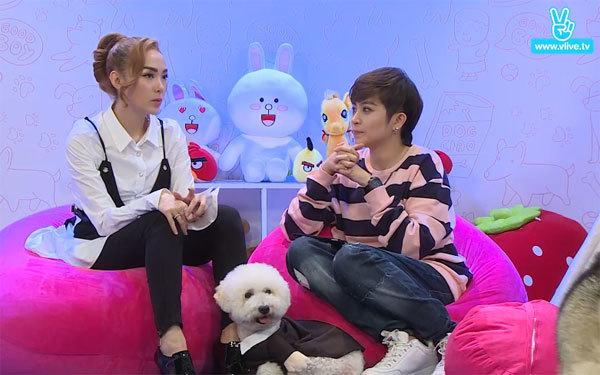 Tham gia chương trình, Minh Hằng còn mang theo chú cún cưng Santa và kể nhiều câu chuyện thú vị về nó. Theo giọng ca Không giữ được anh chia sẻ, Santa rất được cả nhà cưng chiều, thậm chí, còn được ngủ cùng mẹ của cô.