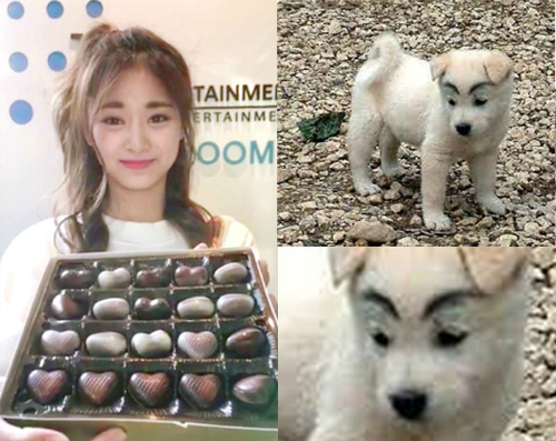 tzuyu-twice-bi-che-co-long-may-cang-ve-cang-xau-6