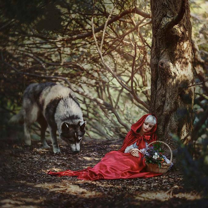 <p> Cô bé quàng khăn đỏ mơ màng bên con sói gian ác trong truyện cổ tích cùng tên của anh em nhà Grimm.</p>