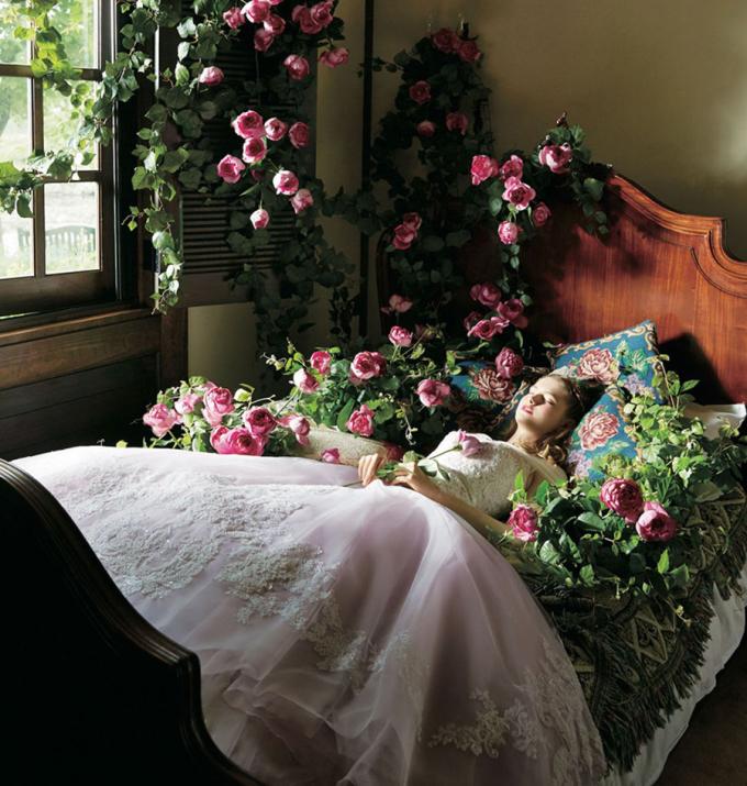 <p> Người đẹp ngủ trong rừng Aurora.</p>