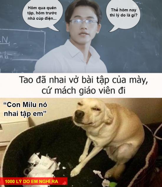 anh-che-1001-chieu-doi-pho-voi-kiem-tra-mieng-dau-gio-5
