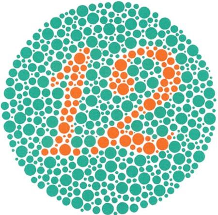 Đoán số trong bảng chấm màu