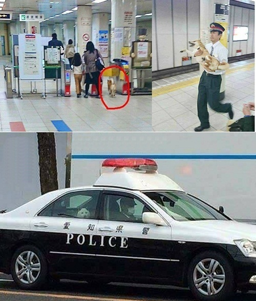 Thanh niên bị bắt giữ vì ngang nhiên trốn vé.
