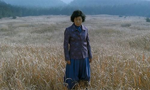 Top phim 18+ Hàn Quốc gây sóng gió tại các giải thưởng quốc tế - 2