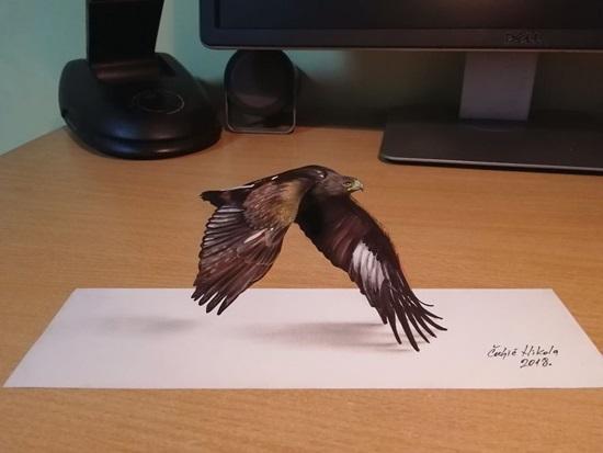 Đại bàng sải cánh bay.