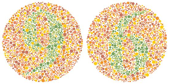 Mắt tinh đoán số trong ảo ảnh màu sắc - 2