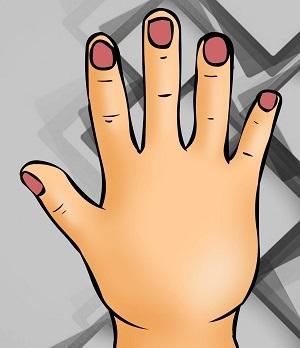 Bói vui: Thuật xem tướng sẽ chỉ rõ bạn là ai qua hình dáng bàn tay - 2
