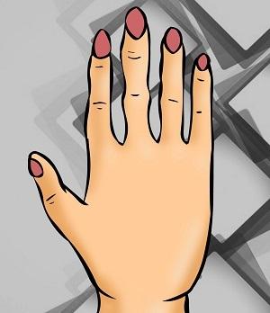 Bói vui: Thuật xem tướng sẽ chỉ rõ bạn là ai qua hình dáng bàn tay - 3