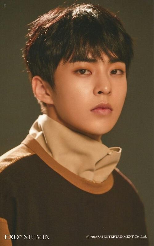 12 chòm sao phù hợp làm bạn gái của thành viên nào trong EXO? - 10