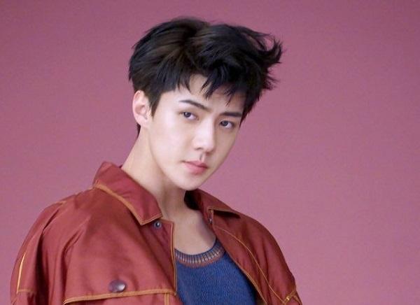 12 chòm sao phù hợp làm bạn gái của thành viên nào trong EXO? - 4