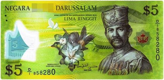 Đây là tiền tệ của quốc gia nào? (2) - 4