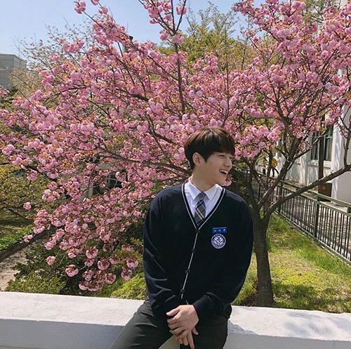 L quay lại với hình tượng mối tình đầu khi mặc đồng phục, chụp ảnh dưới tán cây hoa đào.