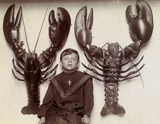 Cậu bé chụp ảnh cùng 2 con tôm hùm khổng lồ bắt được tại bãi biển New Jersey, 1916.