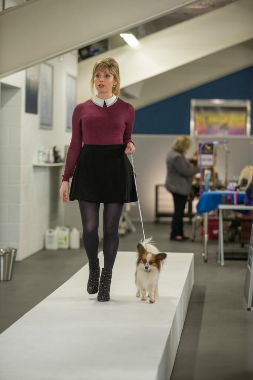 Cười vỡ bụng với những chú cún cưng có khả năng phá án trong Show Dogs