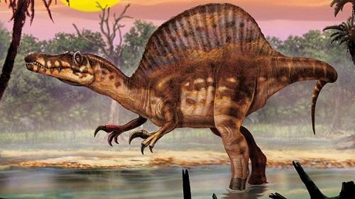 12 chòm sao là hiện thân của loại khủng long nào? - 9