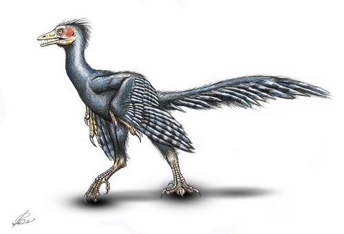 12 chòm sao là hiện thân của loại khủng long nào? - 11