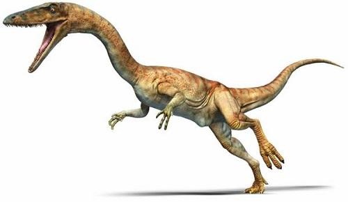 12 chòm sao là hiện thân của loại khủng long nào? - 2