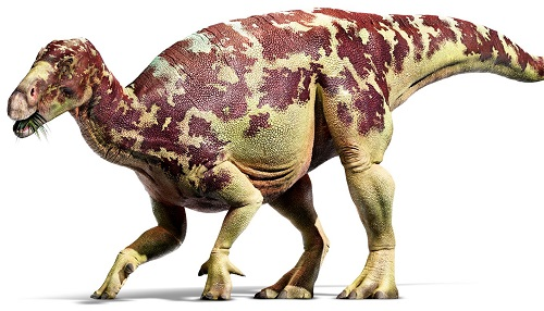 12 chòm sao là hiện thân của loại khủng long nào? - 5