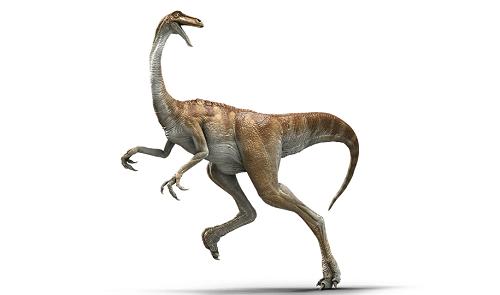 12 chòm sao là hiện thân của loại khủng long nào? - 6