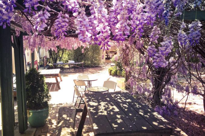 <p> Ai có thể nỡ rời khỏi khu vườn đầy nên thơ như thế này?</p>