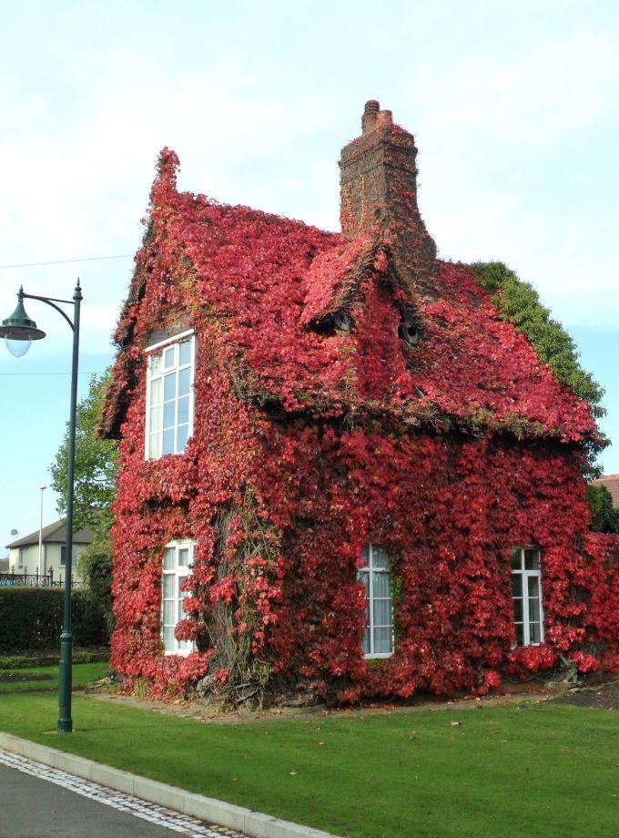 <p> Một ngôi nhà nhỏ ở Sandwell (Anh).</p>
